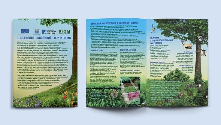 Озеленение школьной территории